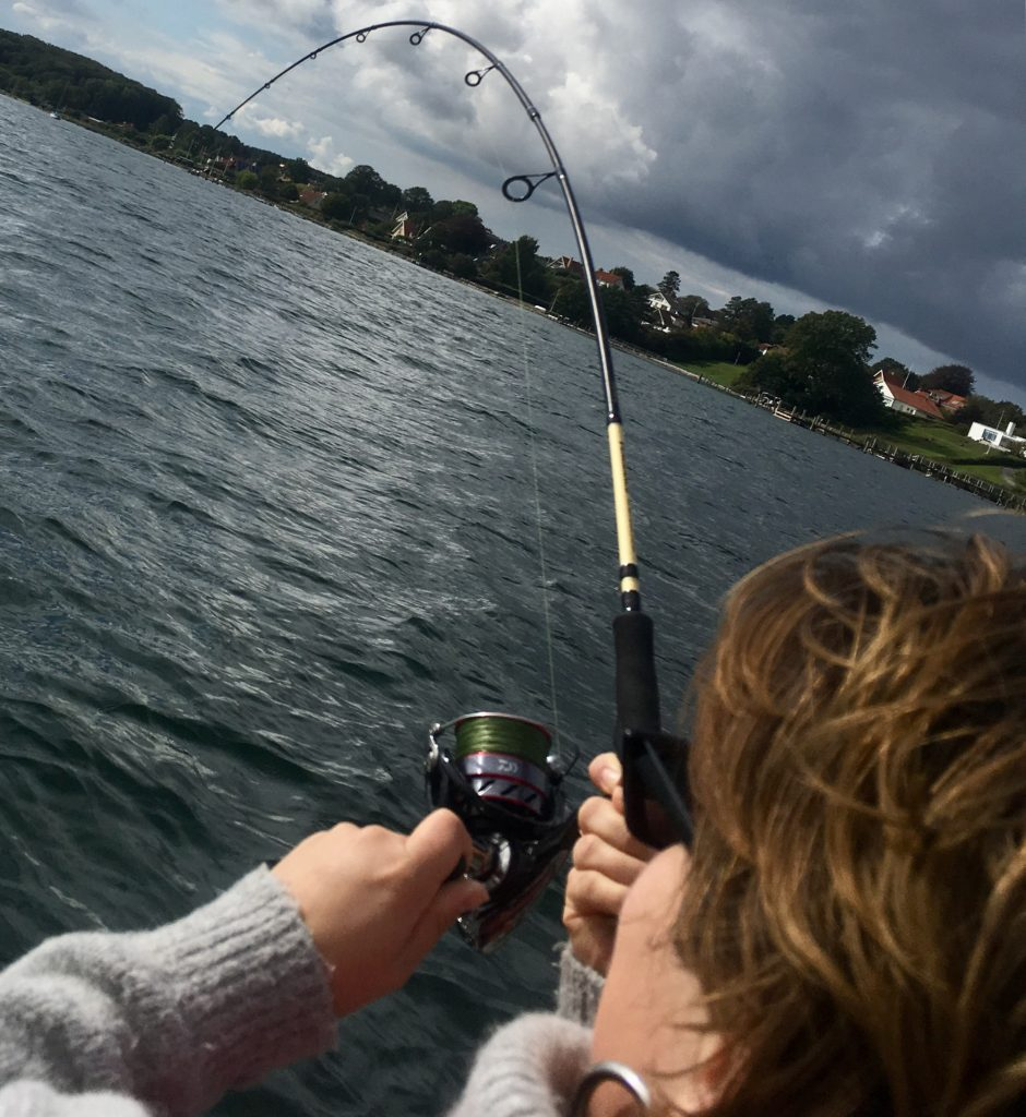 Fisketur for nybegynder