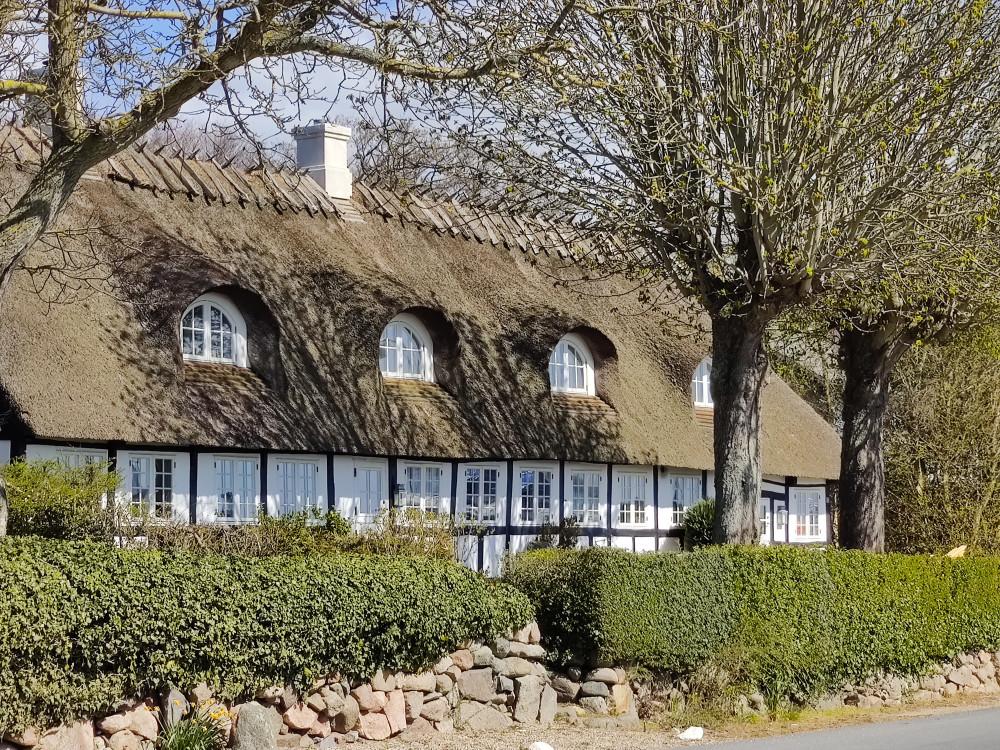 Hus i Dyreborg