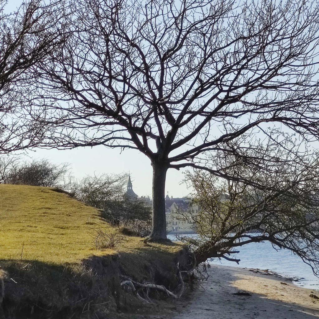 Natureventyr ved Svendborgsund
