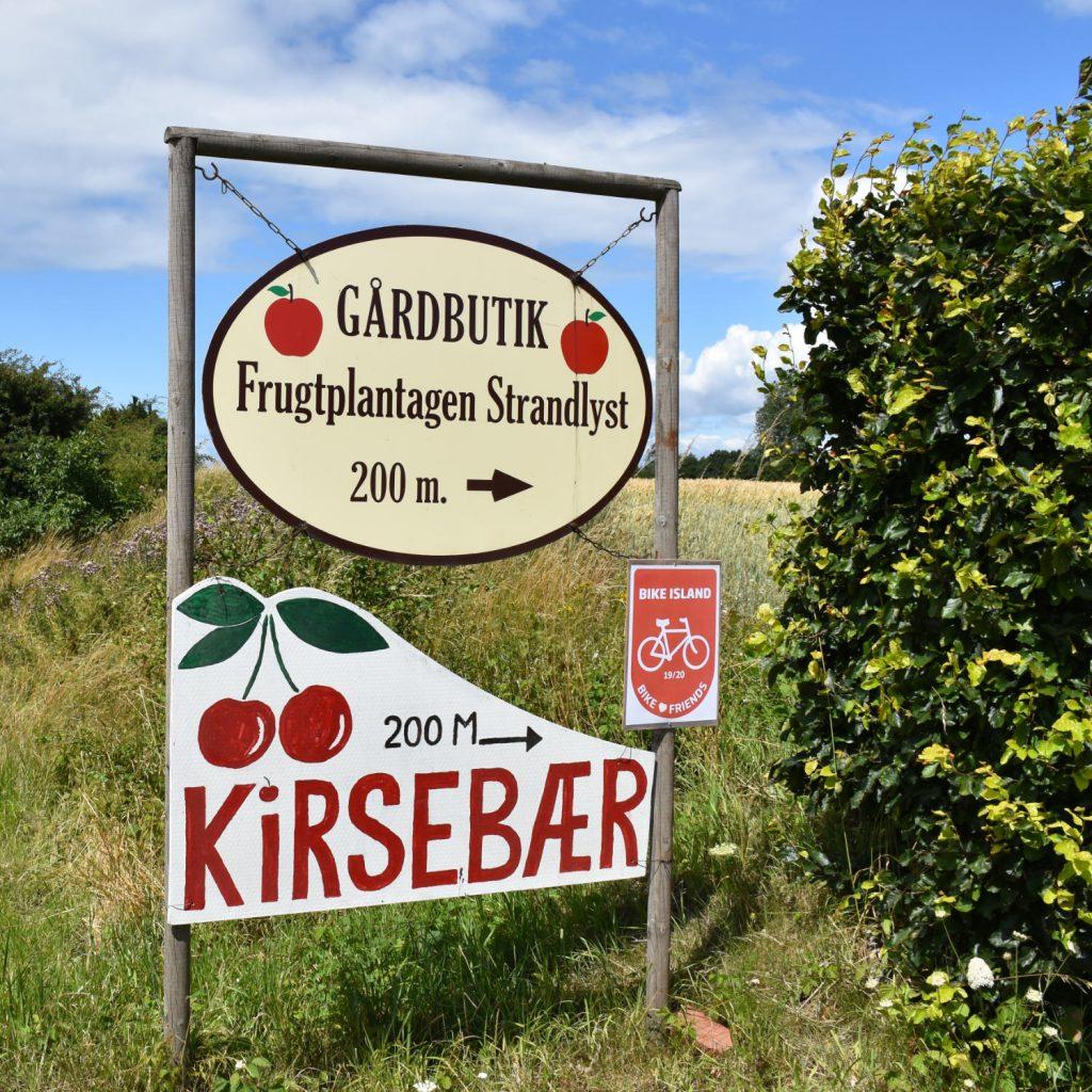 Frugtplantagen Strandlyst på Langeland