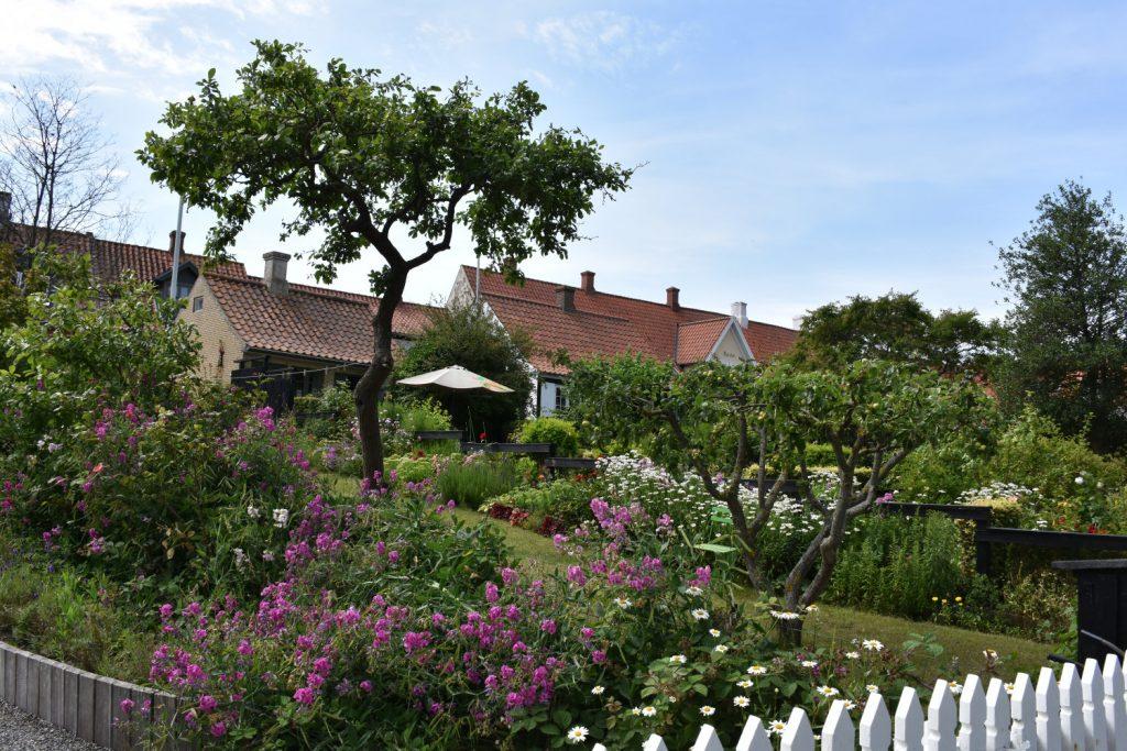 Have med stakit på Ærø