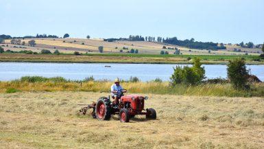 Traktor på Ærø