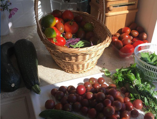 Grøntsager fra Torpegårdens køkkenhave